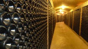 Vinkällare med tusentals viner